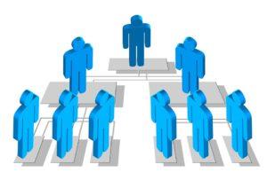 struktur organisasi sederhana, contoh struktur organisasi, definisi organisasi