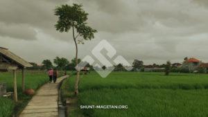 8 Peluang Usaha di Desa yang Menguntungkan